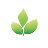 Žalioji Politika logo